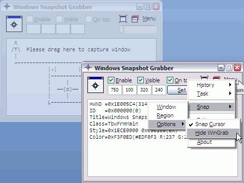 Windows Snapshot Grabber